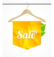 Sale collections template clothes hanger vector image