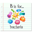 Flashcard alphabet B is for bacteria vector image