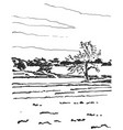 landscape sketch tree and fields vector image
