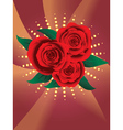 Card with red roses2 vector image