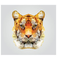 Geometric polygon tiger head triangle pattern vector image