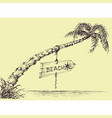 palm tree on the beach wooden board indicating vector image