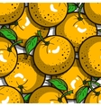 Seamless Pattern Oranges vector image