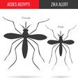 Zika virus graphic design elements vector image