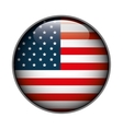 icon flag button usa isolated vector image