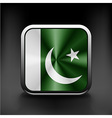 Pakistan national flag national travel icon vector image