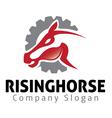 Rising Horse Design vector image