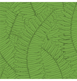seamless background with fern leaves vector image