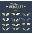 Abstract Wings Big Set Both Retro and vector image