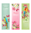 Tropical Flowers and Parrot Birds Banners and Tags vector image vector image
