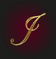 j golden letter vector image vector image
