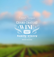 Wine label type design against a vineyards vector image