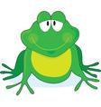 Froggie vector image