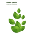 green leaves template vector image