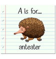 Flashcard letter A is for anteater vector image