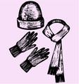 woolen scarf gloves hat vector image