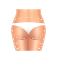 Plastic surgery buttocks and legs isolated vector image vector image
