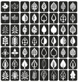 icons tree leaves on black vector image