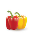 red and yellow bell peppers on white background vector image