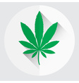 isolated green marijuana leaf symbol eps10 vector image