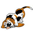 cartoon basset hound vector image