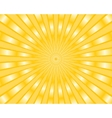 Yellow stripes background vector image