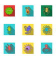 a set of pictures about bacteria and viruses vector image