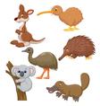 Australian animal cartoon vector image