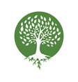 Eco Green Logo vector image