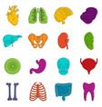 human organs icons doodle set vector image
