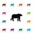 isolated grizzly icon wild element can be vector image