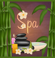 spa salon banner with stones and bamboo thai vector image