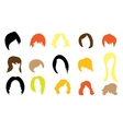 Set of colorful wigs vector image