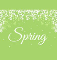 spring background with blooming flowers vector image