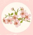 sakura pink vector image vector image