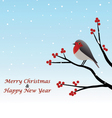 Christmas Greeting Red Robin Sitting On Branch vector image
