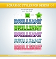 Set of Brilliant Graphic Styles for Design vector image