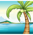 Coconut tree and ocean vector image