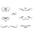 Calligraphy Swirls vector image