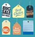 flat design sale tags vector image