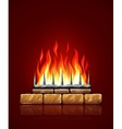 Burning flames of fire vector image