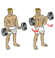 male fitness workout doing barbell durl to train vector image