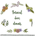 set of hand drawn vintage decor elements isolated vector image