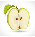 Fresh ripe green apple isolated on white vector image