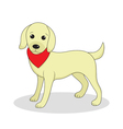Labrador cute dog Cute white puppy Isolated on whi vector image
