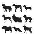 Set of dogs black silhouette vector image