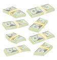 Dollar stacks money banknotes cash symbol vector image