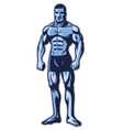 man with muscle bodybuilder body vector image