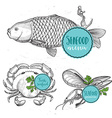 Seafood menu and badges design elements vector image
