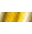 abstract golden texture background vector image